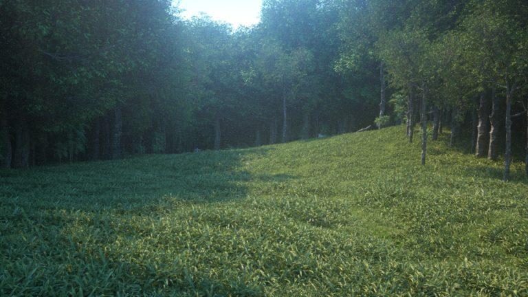 Test de rendu brouillard de la scène cinema4D octane render speedtree